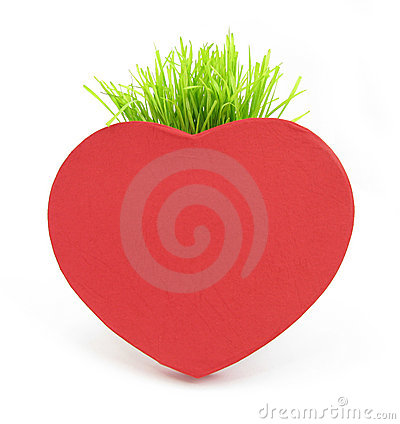 Red heart with grass stalk