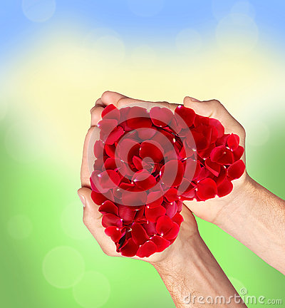 Free Red Heart Of Rose Petals In Man Hands Blurred Natural Stock Photo - 60929350