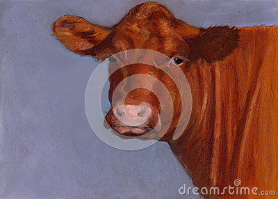 Red Hereford Beef Cow, Oil Pastel Painting Stock Photo