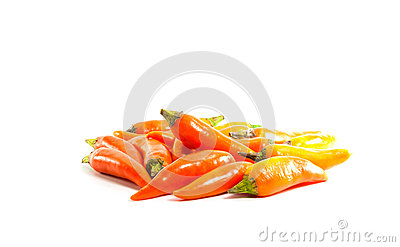 Red hot chili pepper shrink on a white background