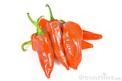 Red hot jalapeno pepper