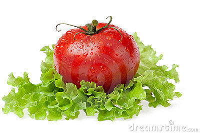 Red juicy tomato with litho of the salad