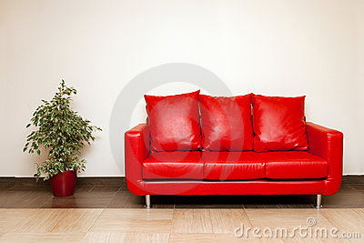 Red leather sofa with pillow and plant