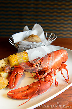 Red lobster stock photo image 34460320 for Best time to visit maine for lobster