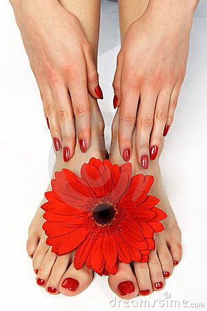 Free Red Manicure And Pedicure With Flower Stock Photo - 8003580