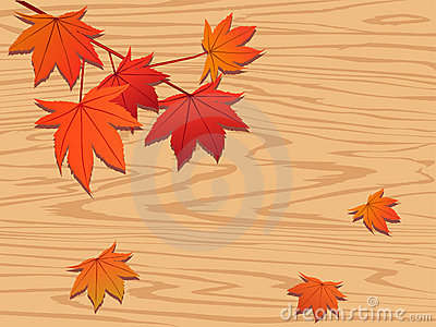 Red maple leaf on wood
