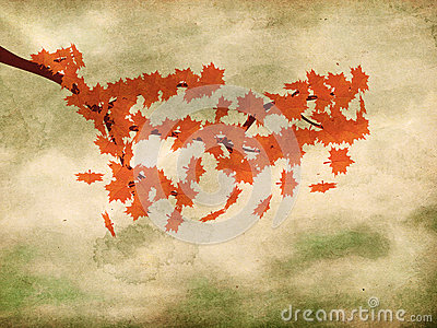 Red maple leaves on grunge background