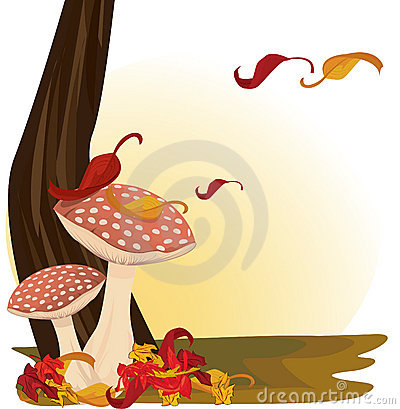 Red Mushrooms