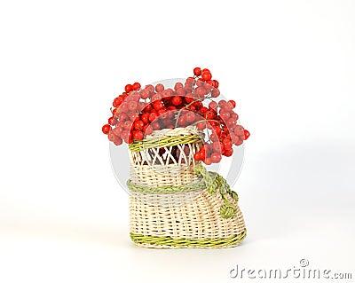 Red natural rowan