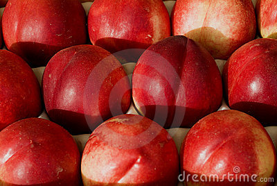 Red nectarines