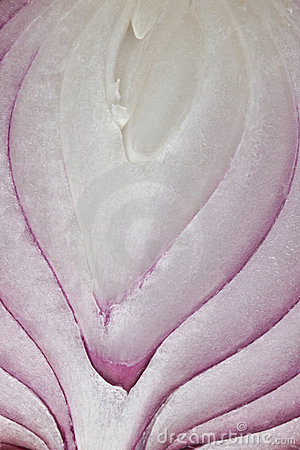 Red Onion Layers