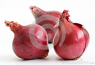 Red onions (allium)