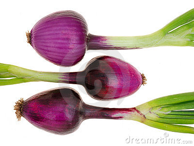 Red onions (purple onions)