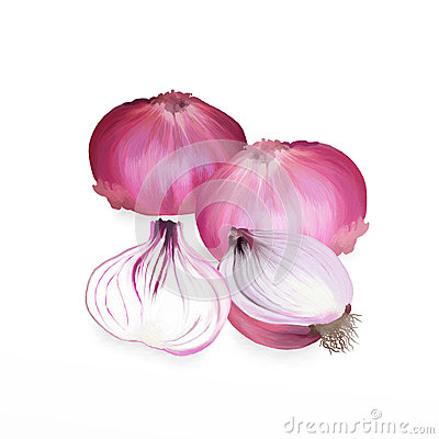 Red Onions and Sliced in Half  on White Ba
