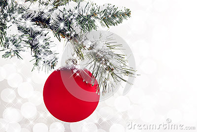 Red Ornament Snowy Branch