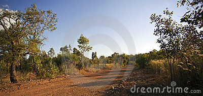 Red Outback Dirt Road, Tropical Bush