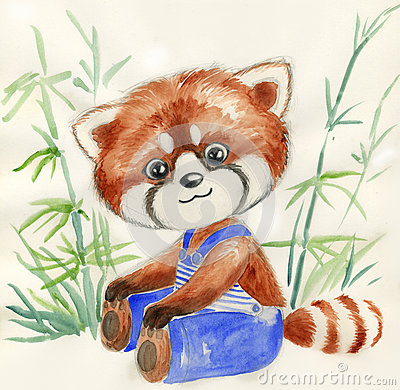 Red panda and bamboo, watercolor for children