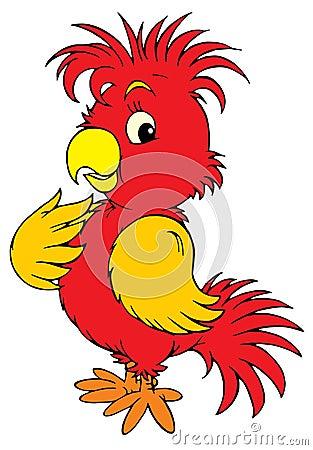 Red Parrot (vector clip-art)