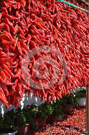 Red pepper series