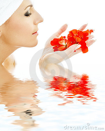 Free Red Petals In Water 3 Stock Images - 1938224