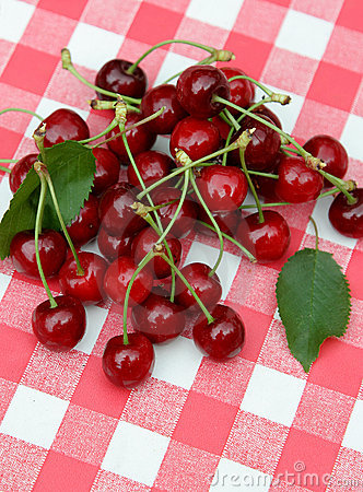 Red picnic cloth with cherry 7.