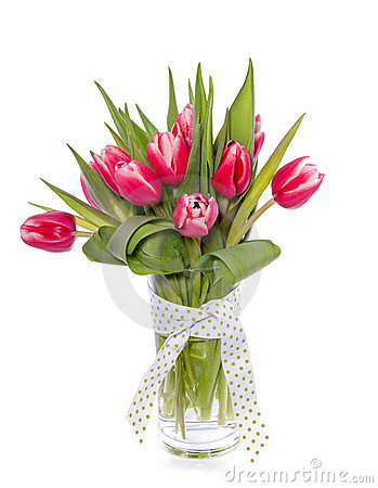 Free Red Pink Tulips Stock Photo - 18330220