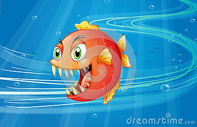 A red piranha under the sea
