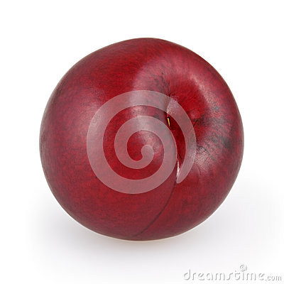 Red plum  on white