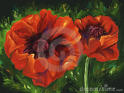 Red Poppies - Digital Painting