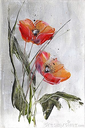 Red poppies on grey