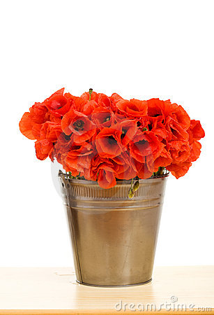 Red poppy flowers in metallic bucket