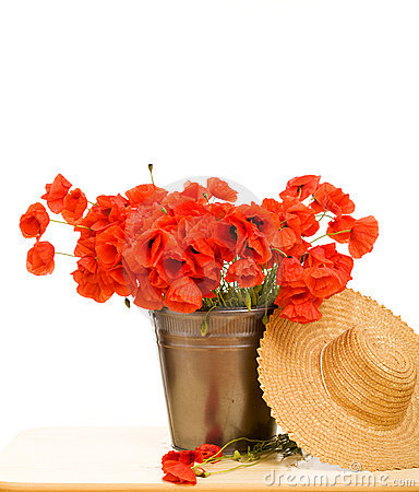Red poppy flowers in metallic bucket and straw hat