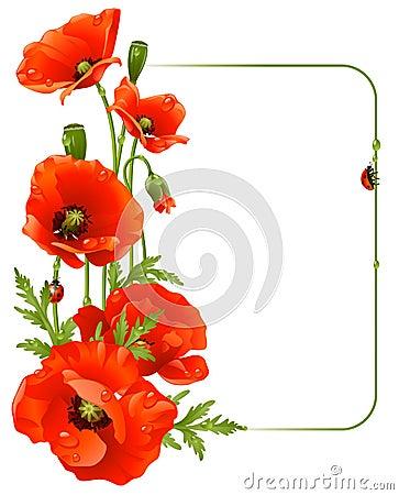 Red poppy frame