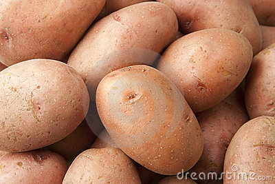 Red Potatoes Close Up