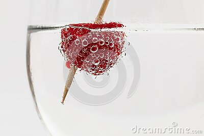 Red Raspberry On Water With Brown Stick Free Public Domain Cc0 Image