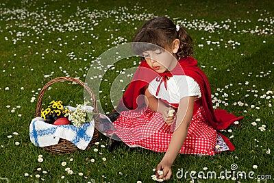 Red riding hood picking daisies