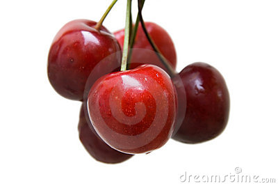 Red ripe cherries on white