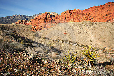 A Red Rock Canyon National Conservation Area