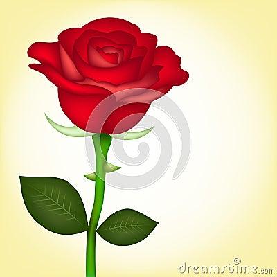 Free Red Rose Royalty Free Stock Photos - 18344088