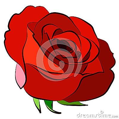 Free Red Rose Royalty Free Stock Image - 3952426
