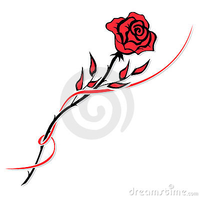 Free Red Rose Stock Photo - 8138030