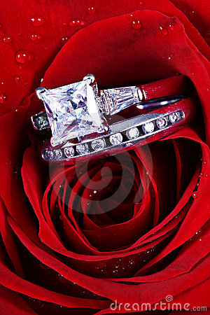 Free Red Rose And Diamond Rings Stock Image - 13165471