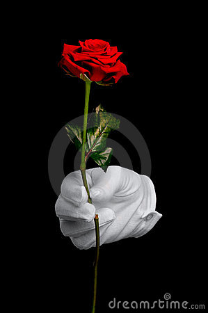 Free Red Rose And White Glove Stock Photography - 7827992