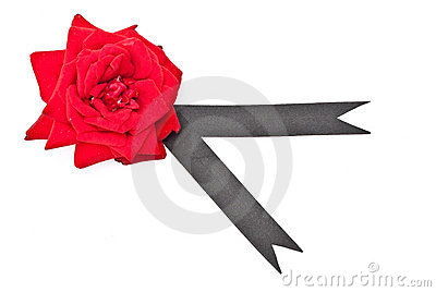 Red rose with black ribbon