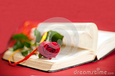 red rose at book