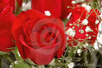 Red Rose in a Bouquet