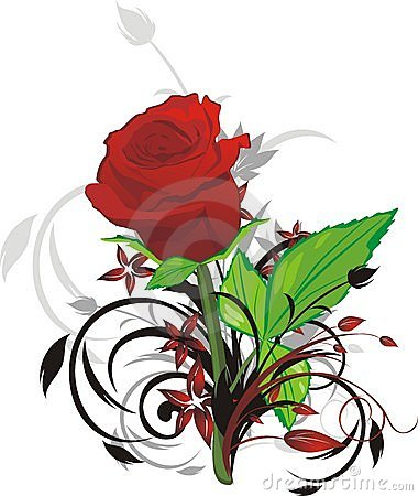 Red rose and decorative twigs
