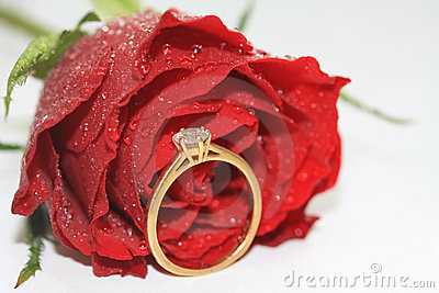 Red rose and diamond solitaire in bridal tears