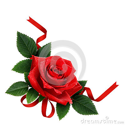 Free Red Rose Flower And Silk Ribbon Arrangement Stock Photography - 79253102