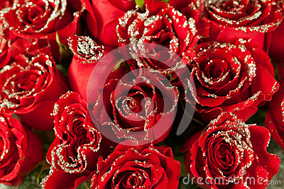 Red rose flowers  with sparkle particles